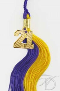 Purple & Gold Tassel